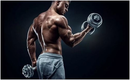 How to learn to fight? How does Trenbolone mix can help?