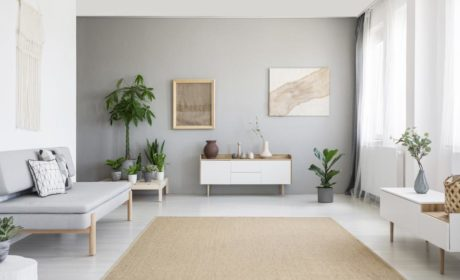 Must-Have Offers of Your Future Interior Design Partner