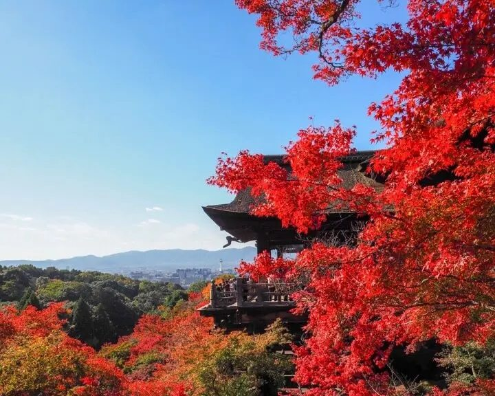 Autumn In Japan – Perfect And Comfortable Time To Visit This Amazing Country